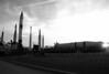 The Rocket Garden in Black & White.