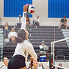 AHS VB TOURN 081917_SBP_548 copy