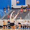 AHS VB TOURN 081917_SBP_249 copy