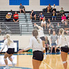 AHS VB TOURN 081917_SBP_487 copy