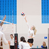 AHS VB TOURN 081917_SBP_137 copy