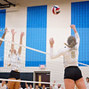 AHS VB TOURN 081917_SBP_173 copy