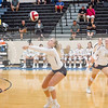 AHS VB TOURN 081917_SBP_656 copy