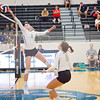 AHS VB TOURN 081917_SBP_446 copy