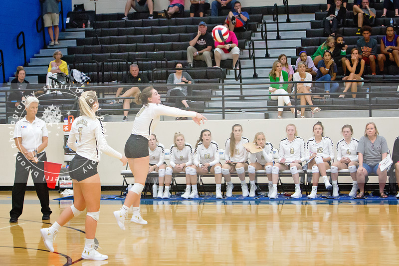 AHS VB TOURN 081917_SBP_541 copy