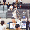 AHS VB TOURN 081917_SBP_536 copy