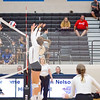 AHS VB TOURN 081917_SBP_464 copy