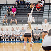 AHS VB TOURN 081917_SBP_695 copy