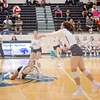 AHS VB TOURN 081917_SBP_281 copy