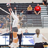 AHS VB TOURN 081917_SBP_465 copy