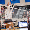 AHS VB TOURN 081917_SBP_270 copy