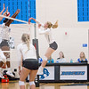 AHS VB TOURN 081917_SBP_133 copy
