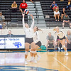 AHS VB TOURN 081917_SBP_462 copy