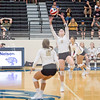 AHS VB TOURN 081917_SBP_357 copy