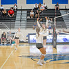 AHS VB TOURN 081917_SBP_604 copy