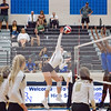 AHS VB TOURN 081917_SBP_600 copy