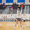 AHS VB TOURN 081917_SBP_662 copy