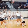 AHS VB TOURN 081917_SBP_419 copy