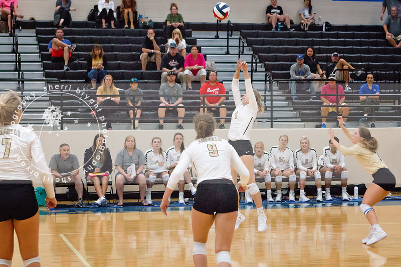 AHS VB TOURN 081917_SBP_333 copy