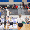 AHS VB TOURN 081917_SBP_421 copy