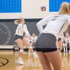 AHS VB TOURN 081917_SBP_017 copy