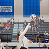 AHS VB TOURN 081917_SBP_651 copy