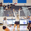 AHS VB TOURN 081917_SBP_506 copy