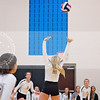 AHS VB TOURN 081917_SBP_068 copy