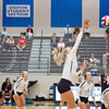 AHS VB TOURN 081917_SBP_659