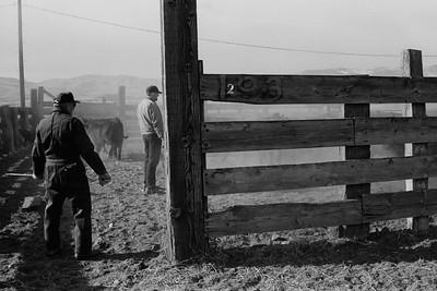 Diehl Ranch Photostory