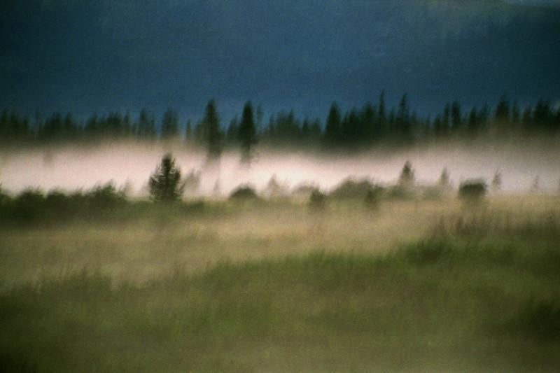 Yellowstone + Grand Tetons | Summer 2002