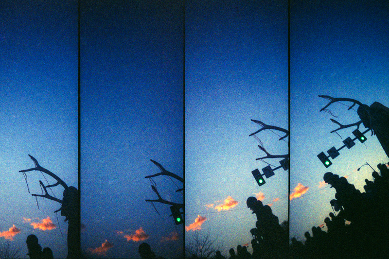 Nov 2010 | Festival of the Dead