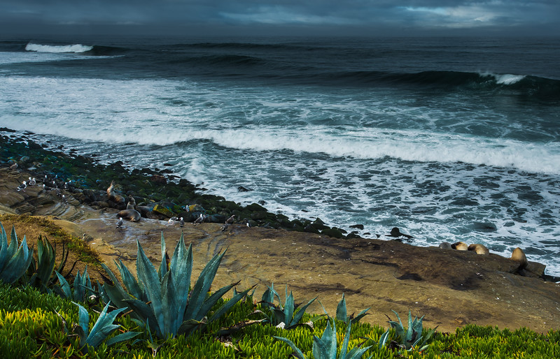 Pacific Coast California