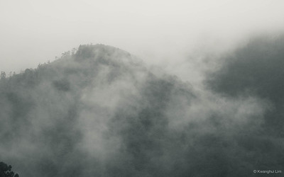 Mist, Hakone.