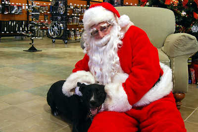 0958 2012 Santa Visits J&P Cycles Florida Superstore