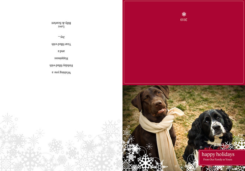 "Folded card - Jewel and Maggie on front, blank on left side, holiday wishes on right side and red back with date.<br /> Visit <a href=""http://www.myproductcatalog.com/index.html"">http://www.myproductcatalog.com/index.html</a>  for more options."