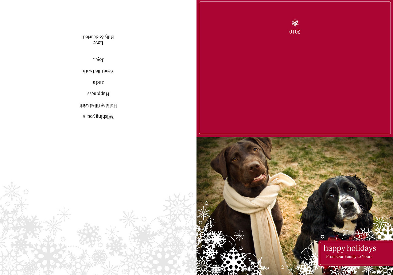 """Folded card - Jewel and Maggie on front, blank on left side, holiday wishes on right side and red back with date.<br /> Visit <a href=""""http://www.myproductcatalog.com/index.html"""">http://www.myproductcatalog.com/index.html</a>  for more options."""