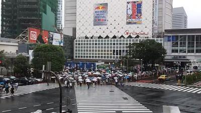Shibuya Crossing (Time-Lapse Video), Tokyo, Japan