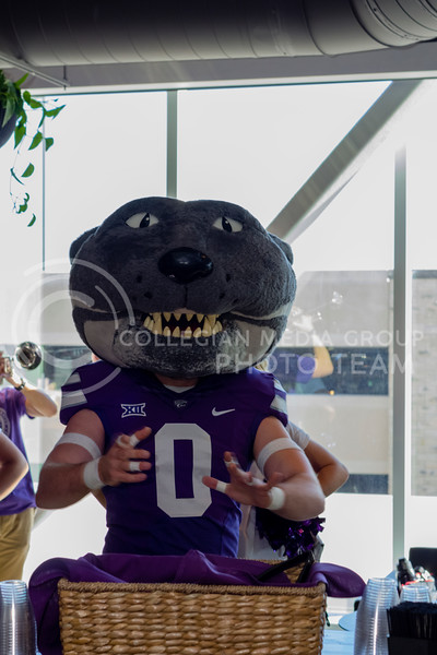 Willie The Wildcat joins the festivities during JP's Union Station grand opening on March 1, 2018 (Alex Shaw | Collegian Media Group)