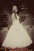 DSC_8954 Vintage
