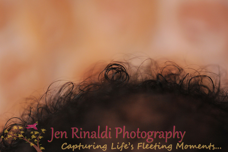 JRP_3681
