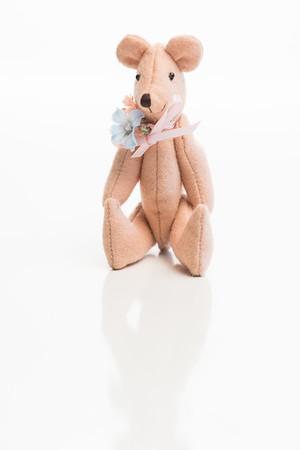 Doll_112317_0092