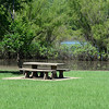Kevin Harvison | Staff photo<br /> Water from Lake Eufaula stands near a picnic table at Elm Point Recreational Area.