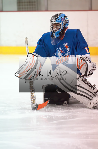 01-27-2013 Jr Gulls vs Wave