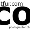 dotfur banner44