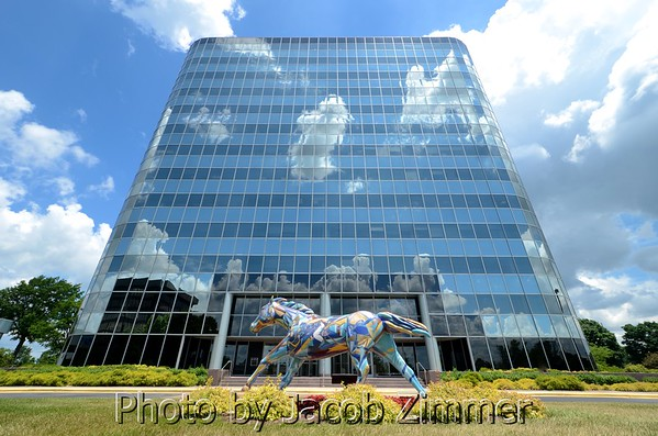 COMMERCIAL: Business Portraits, Real Estate, Products, Conventions & Trade Shows