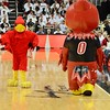 The Cardinal Bird Mascot challenges the inflatable imposter to a duel.