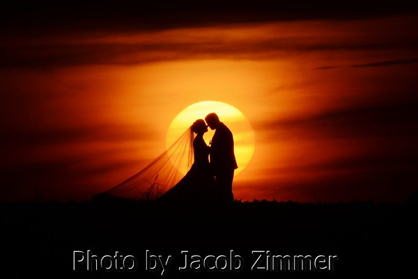Weddings and Engagement Portraits