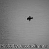 Every picture tells a story, but even a thousand words may not explain the mystery of why a man in a canoe braved the Ohio River alone on a cold and sunless winter evening. February 12, 2013.