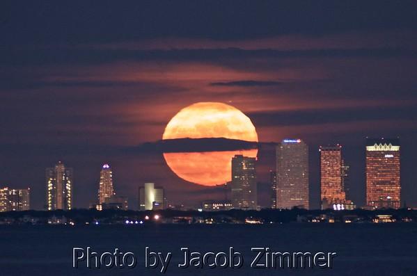 Tampa Bay Florida Photos